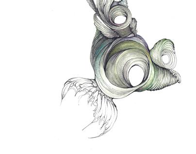 Seahorse no.3