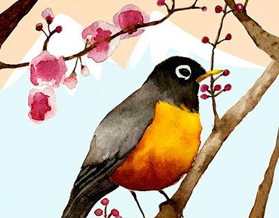 Bird in Sakura tree