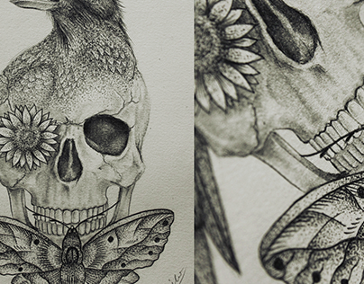 skull/crow/sunflower/moth