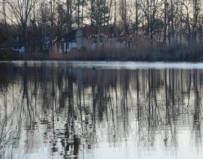 Bezdan winter landscape