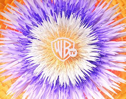 Warner TV Idents