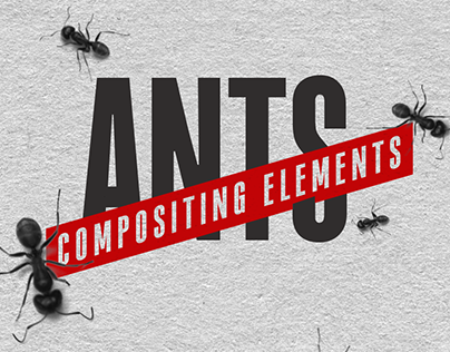 Ants - Compositing Elements