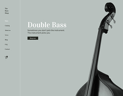 Double Bass   music shop