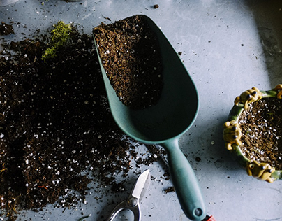 The Healing Benefits of Gardening