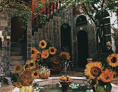 Van Gogh In Damascus