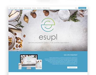 logo design and landing page design