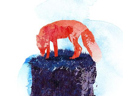 illustrations 2016