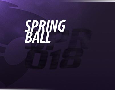 2018 Spring Ball
