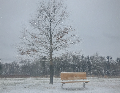 Snow and a Bench
