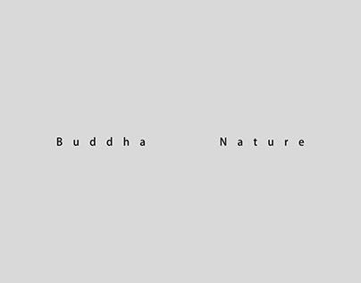 Buddha Nauture