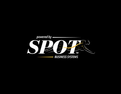 SPOT Business Systems - Rebranding