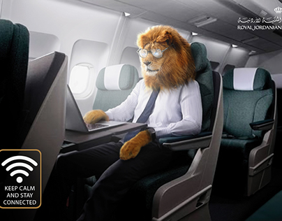 Lion on airplane
