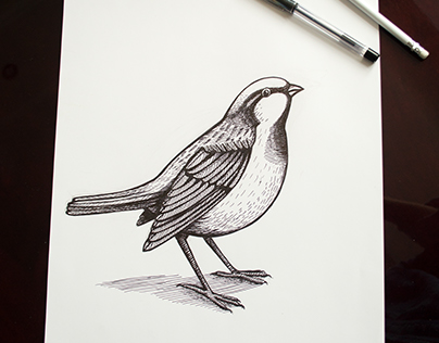 Graphic bird