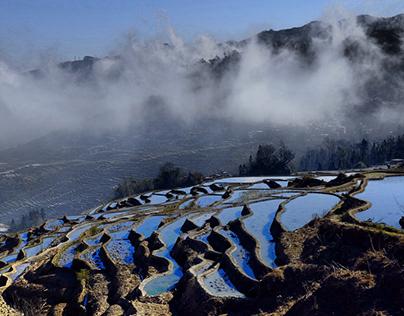 Honghe Landscape
