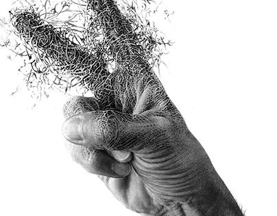 hand 01.18