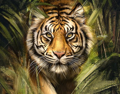 Procreate Painting Tiger