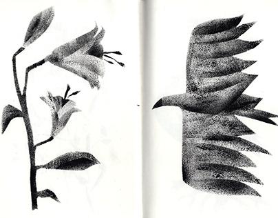 Stencil experiments