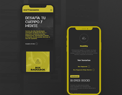 Box Ragnarok · Diseño & Desarrollo web