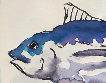 Fish (II)