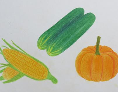 色鉛筆 蔬果