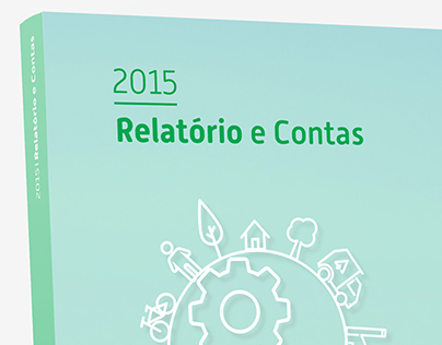 Ambisousa_Report and Accounts2015