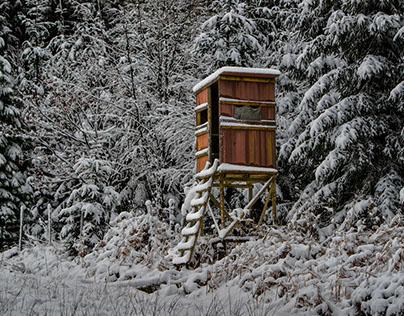 Diana's Throne in Wintertime