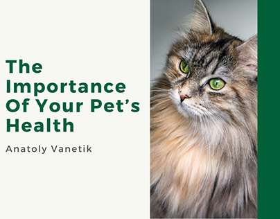 The Importance Of Your Pet's Health