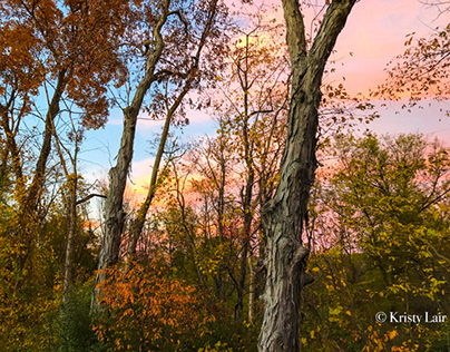 Fall sunset colors