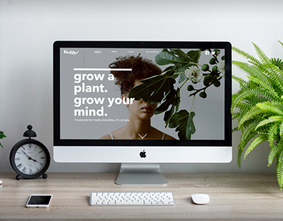 Plantify | House plants made easy