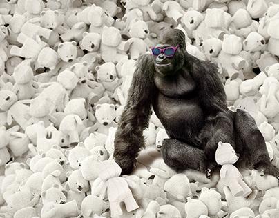 Gorilla/Bears