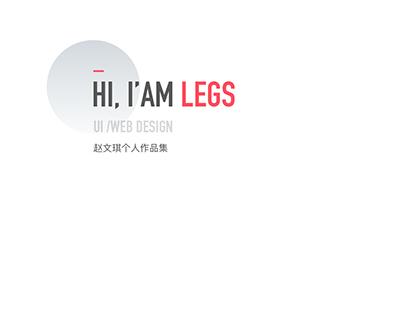 Legs 2016 years work summary