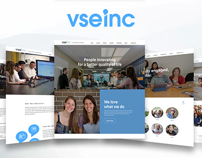 VSEinc Website