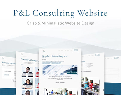 P&L Consulting Website
