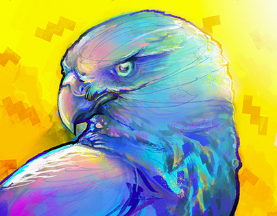 Rainbow Hawk