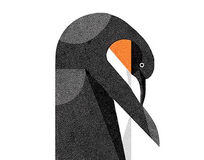 Geometric Birds pt.1
