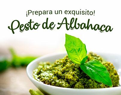 Pesto de Albahaca.