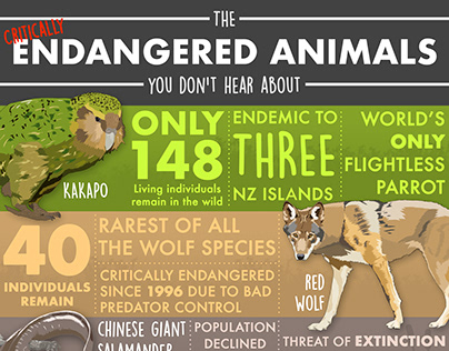 Endangered Wildlife Infographic