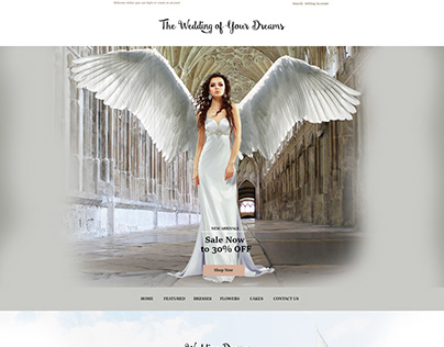Wedding Dresses Website Design