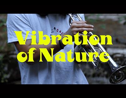 Vibration of Nature