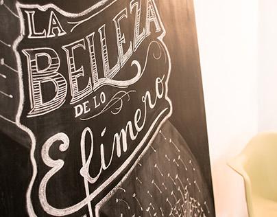 The Beauty of Ephemeral Things|La Belleza de lo Efímero