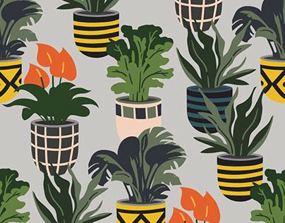 Seamless patterns | Plants in pots