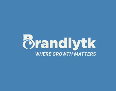 watch wordpress Website Smoothly tips with Brandlytk