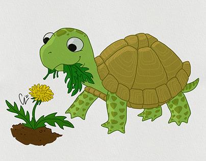 Charakter Design: Kleine Schildkröte
