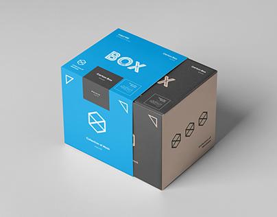Carton Box Mock-up 100x100x100 & Wrapper
