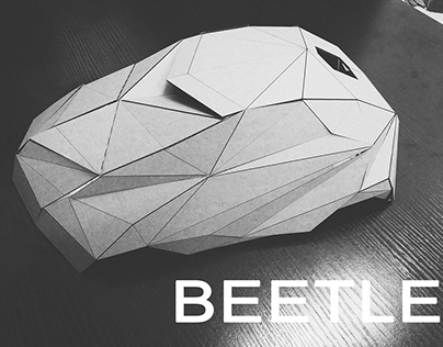 BEETLE/Geometric car