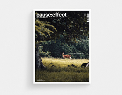 cause:effect