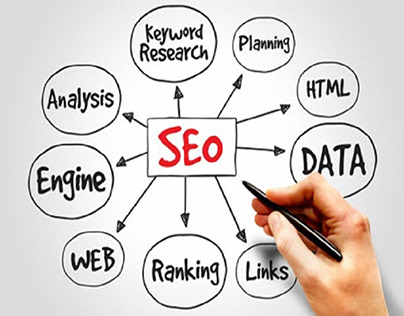 What are the stages of training in seo coaching?