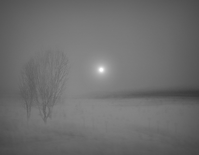 Winter. The sun