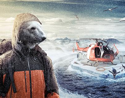 The Great Polar Robbery