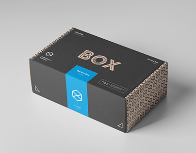 Carton Box Mock-up 230x140x80